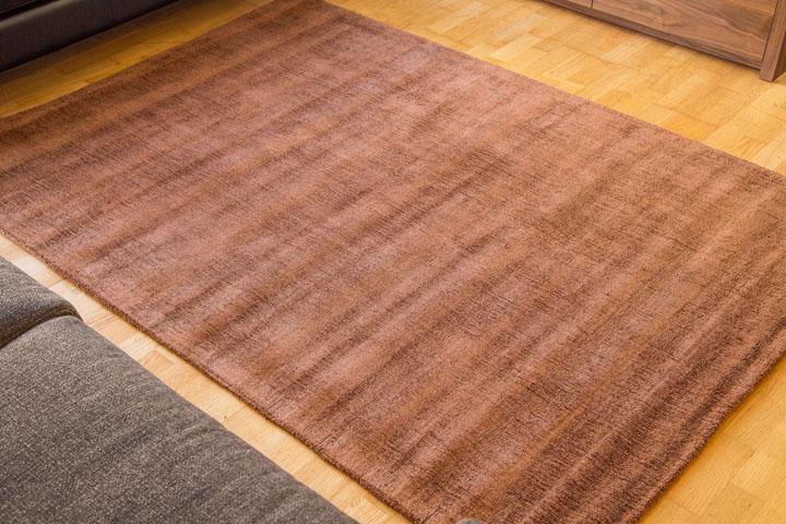 E-comfort 手織りラグ ダイナスティー アンティーク 230x160cm ブラウン | 設置例